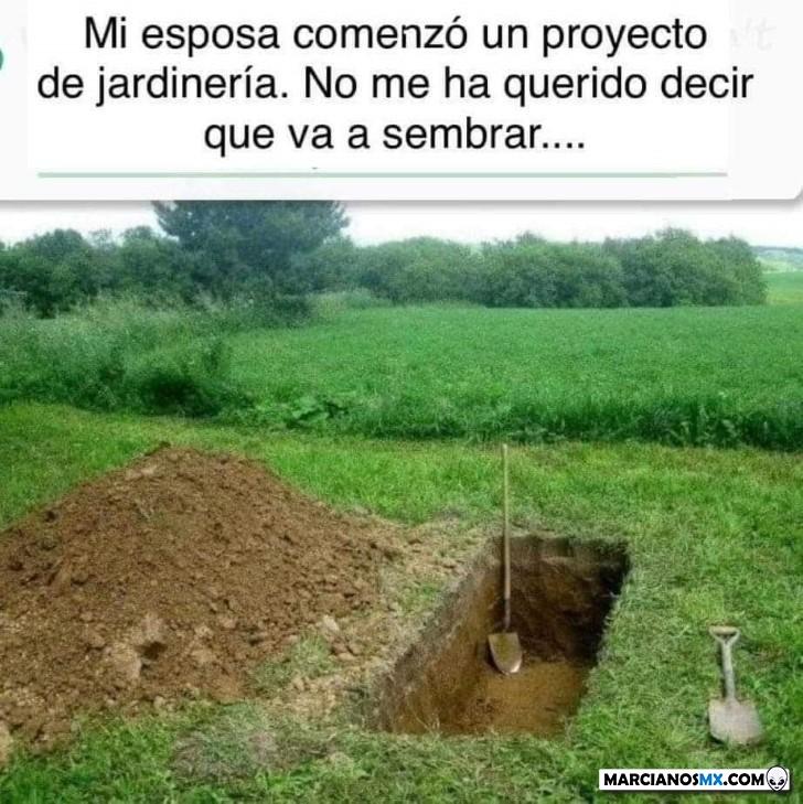 Marcianadas 426 10042020001248 (87)