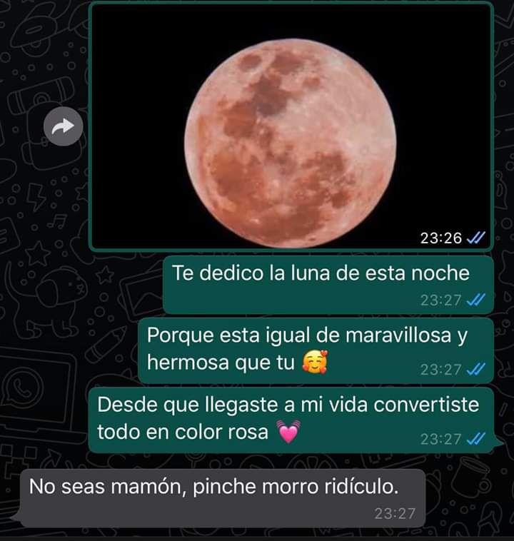 Marcianadas 427 17042020001255 (263)
