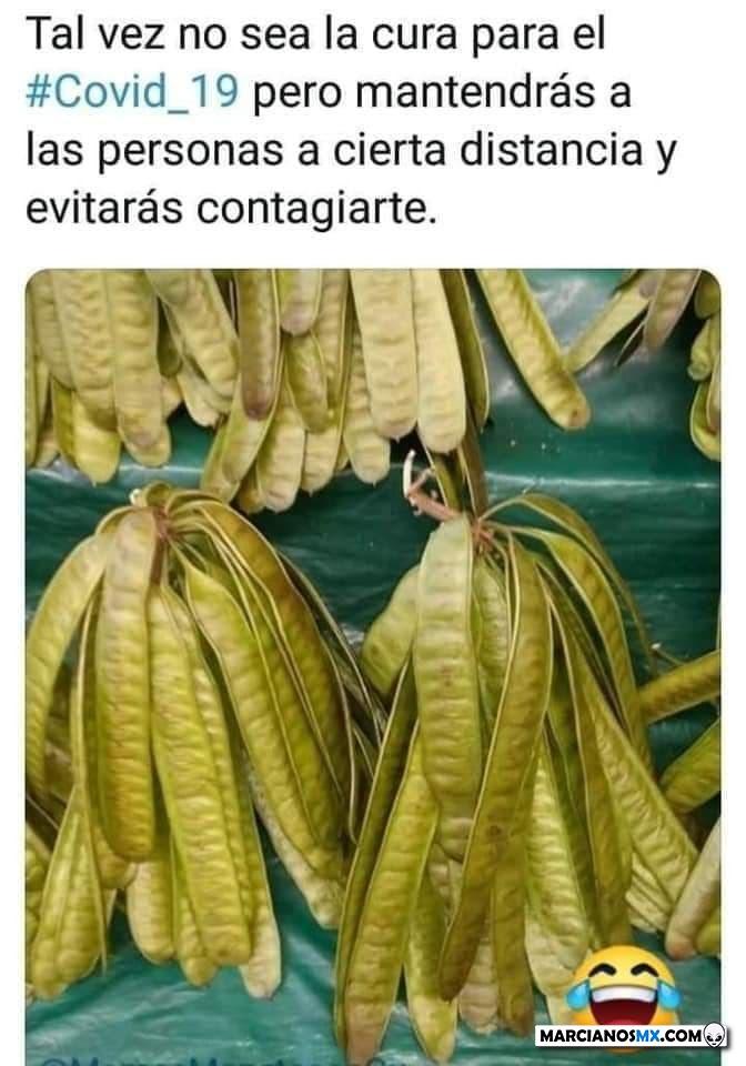 Marcianadas 427 17042020001255 (78)