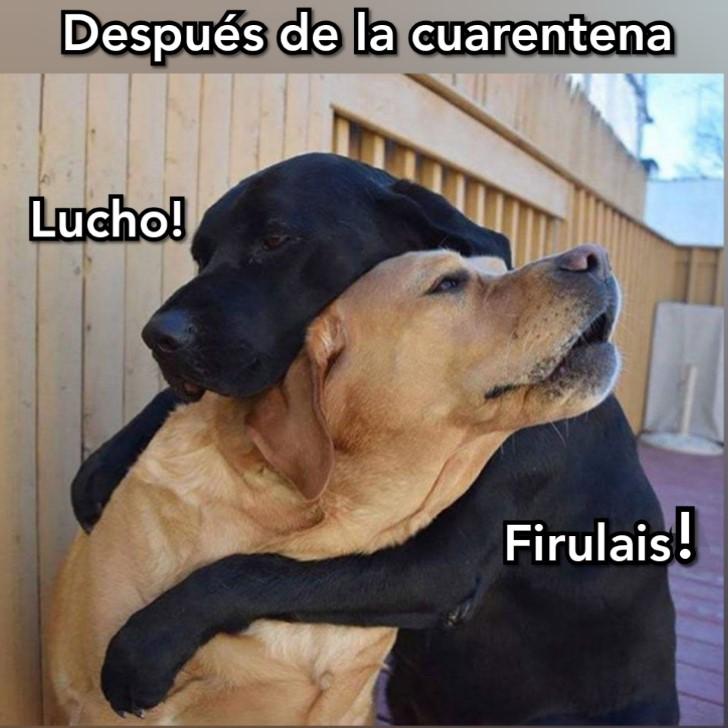Marcianadas 428 24042020001459 (223)