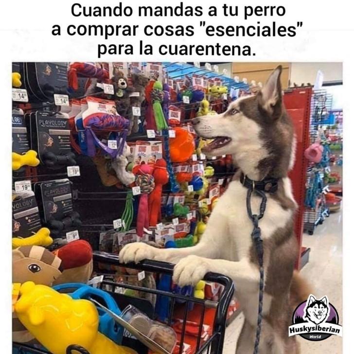 Marcianadas 428 24042020001459 (281)