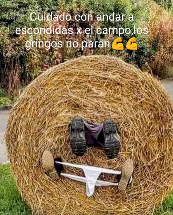 Marcianadas 429 01052020001219 (105)