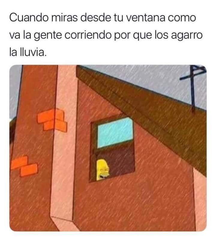 Marcianadas 429 01052020001219 (17)