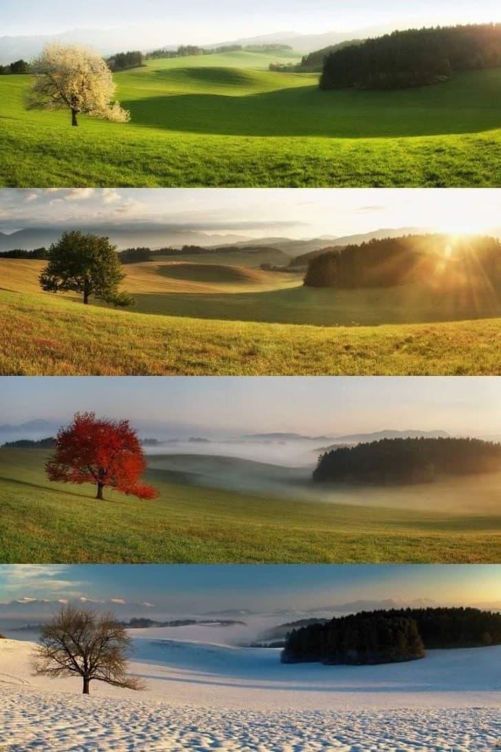 cuatro estaciones del año en eslovaquia
