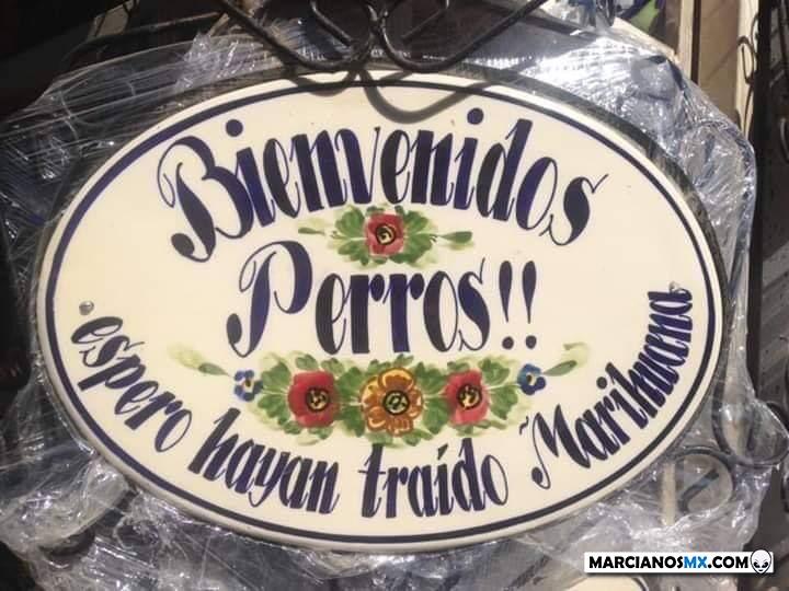 Marcianadas 430 08052020001349 (124)