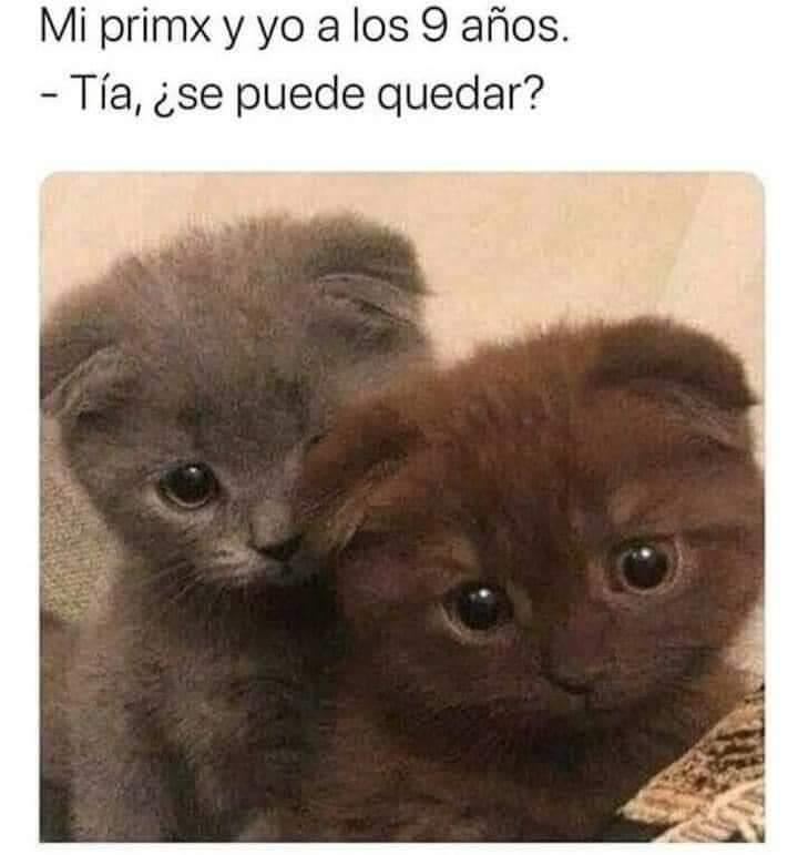 Marcianadas 430 08052020001349 (145)