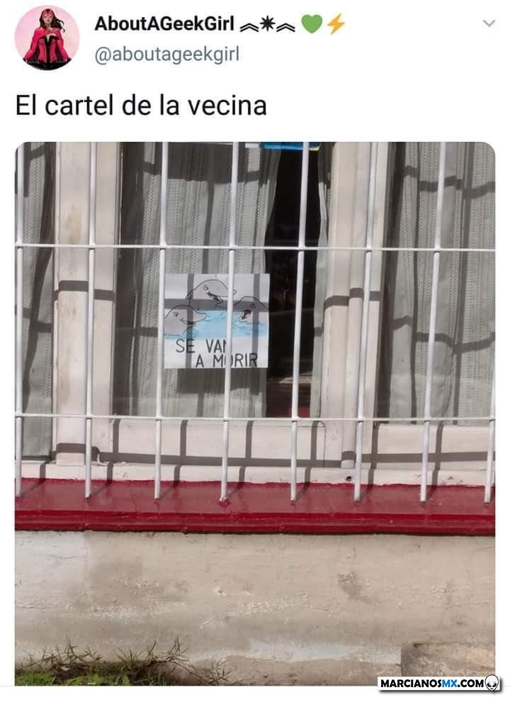 Marcianadas 430 08052020001349 (182)