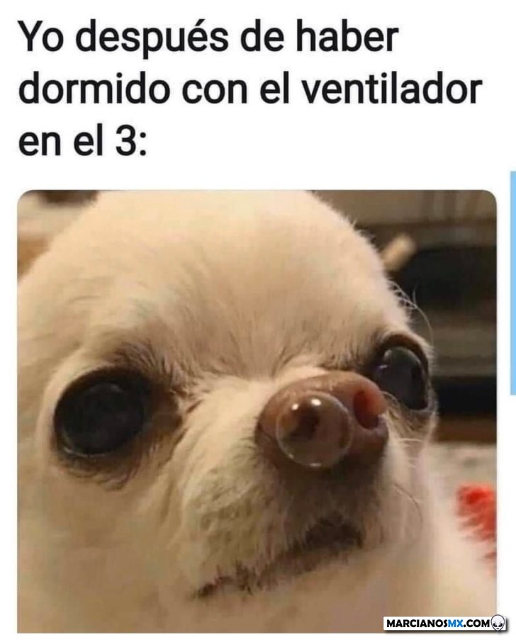 Marcianadas 431 15052020001243 (120)