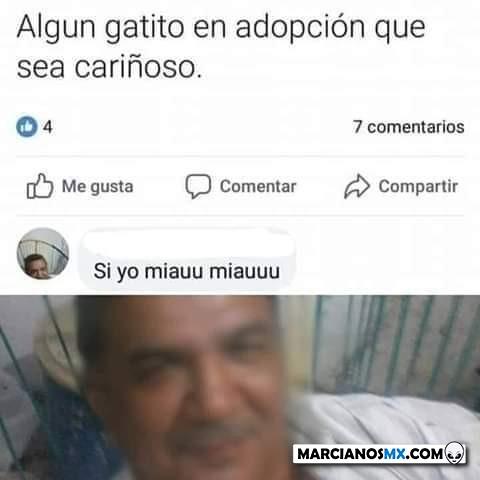 Marcianadas 431 15052020001243 (151)