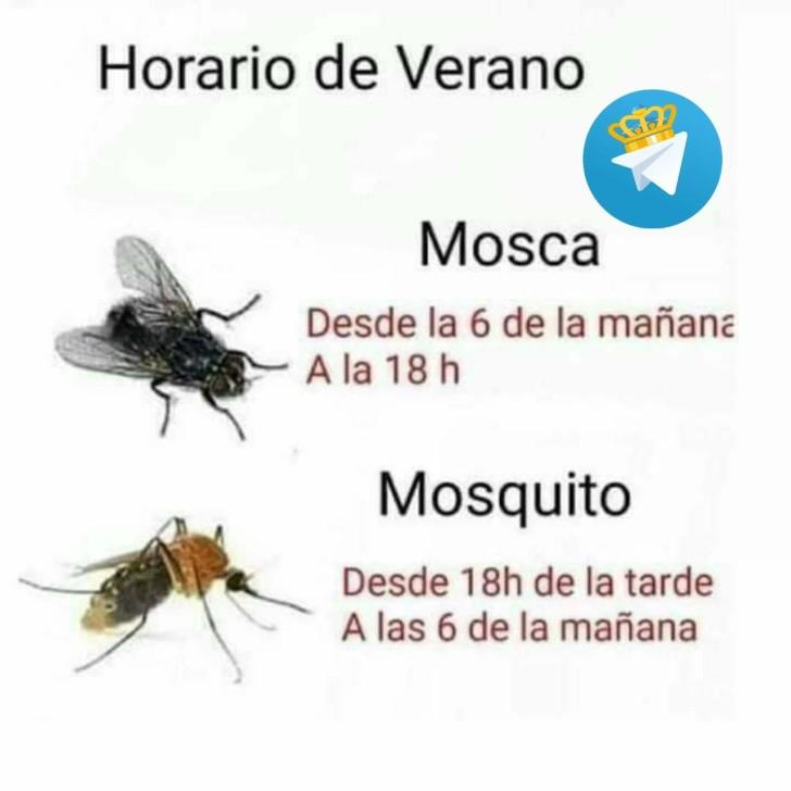 Marcianadas 431 15052020001243 (164)