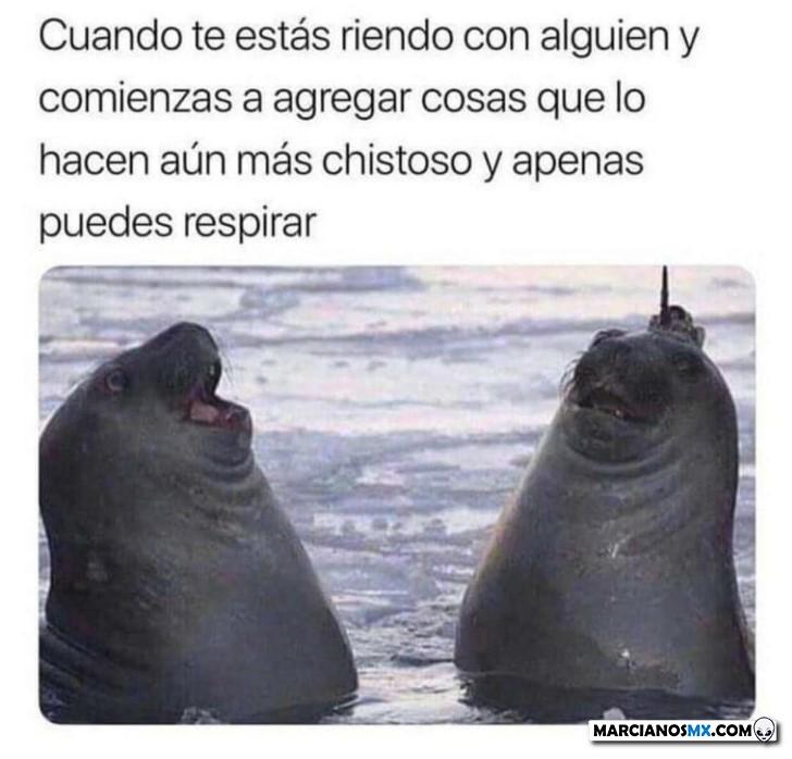 Marcianadas 431 15052020001243 (327)