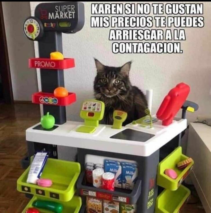 Marcianadas 431 15052020001243 (336)