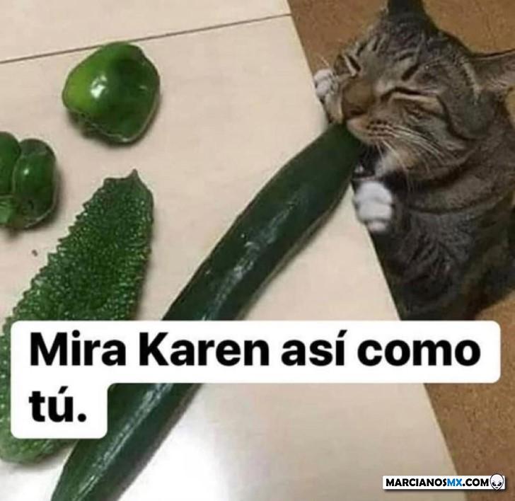 Marcianadas 432 22052020001425 (358)
