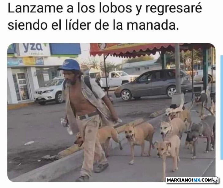Marcianadas 432 22052020001425 (78)