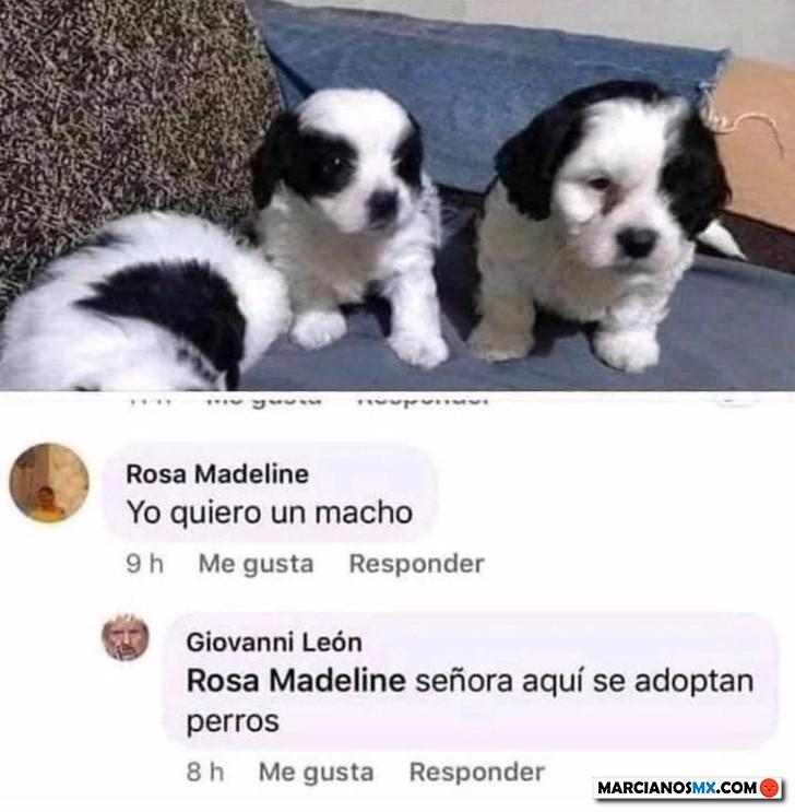 Marcianadas 433 29052020001248 (15)