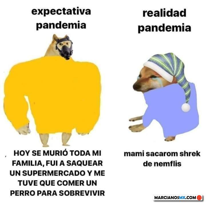 Marcianadas 433 29052020001248 (16)