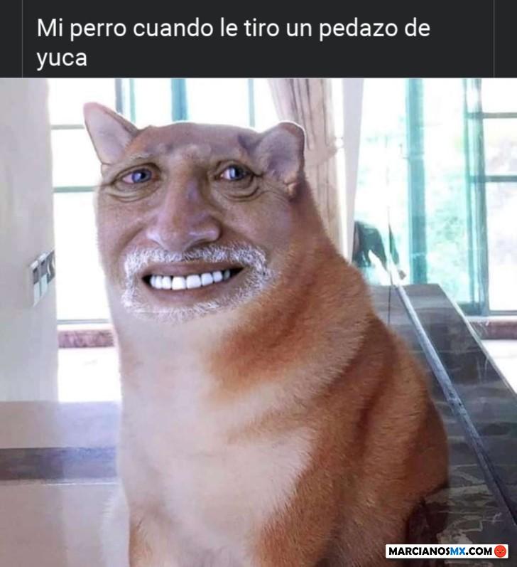 Marcianadas 433 29052020001248 (188)