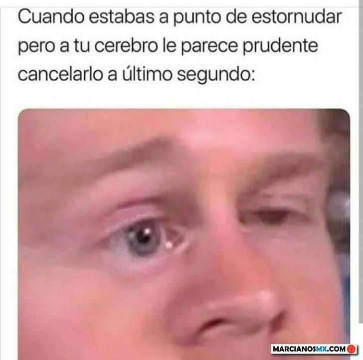 Marcianadas 433 29052020001248 (193)