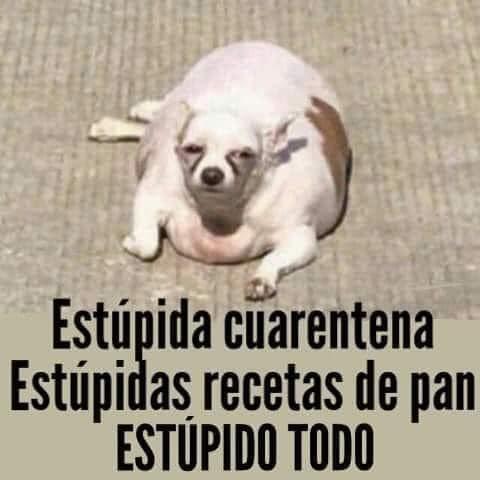 Marcianadas 433 29052020001248 (60)