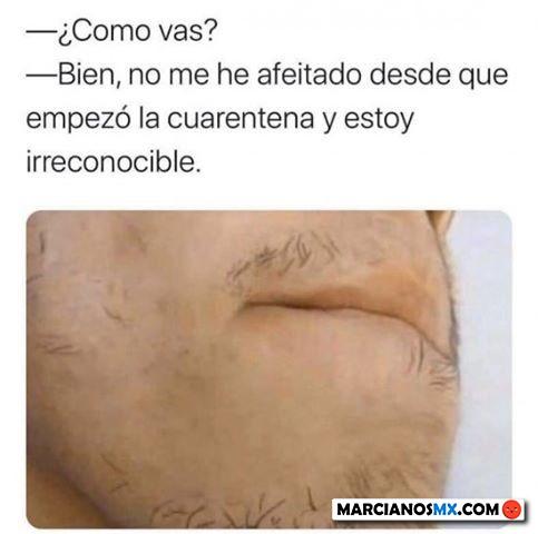 Marcianadas 433 29052020001248 (63)