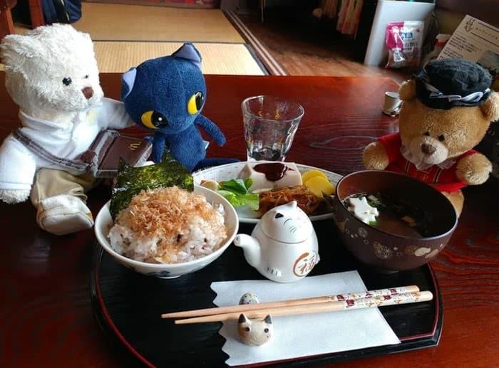 Nyan Nyan Ji Templo o Cafeteria Japones de gatos (14)