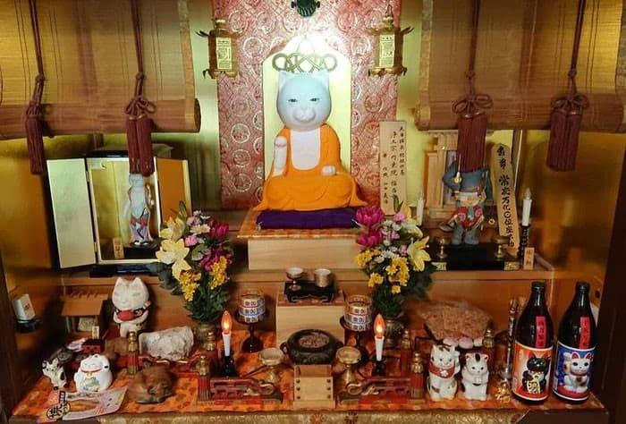 Nyan Nyan Ji Templo o Cafeteria Japones de gatos (2)