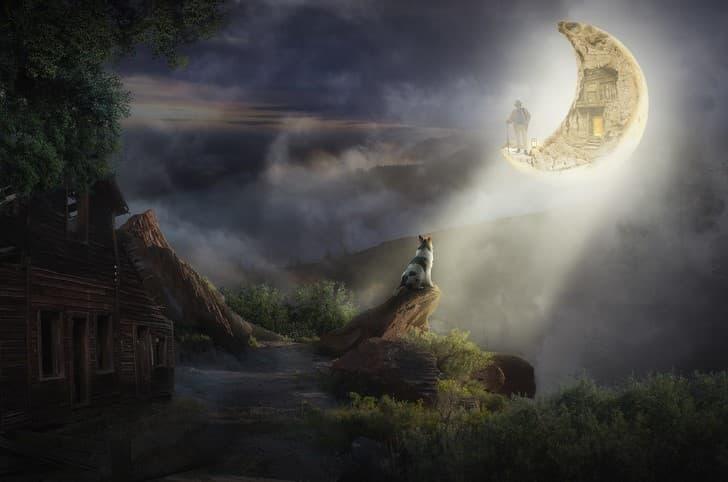 el perro y la luna paisaje surrealista