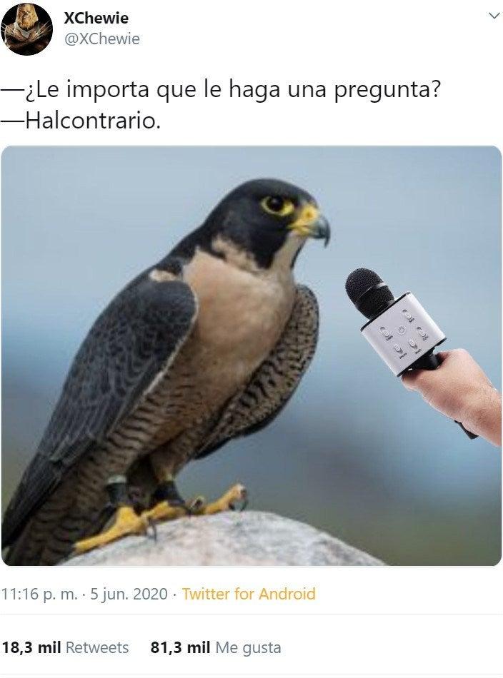 Marcianadas 435 120620201217 (15)