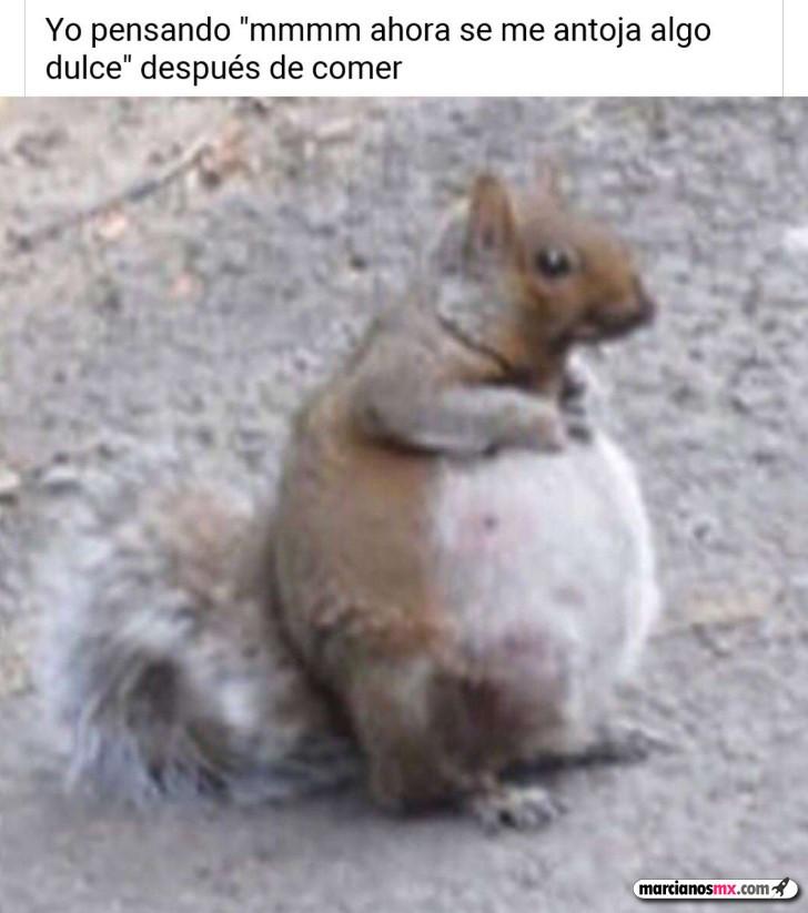 Marcianadas 436 19062020001453 (136)