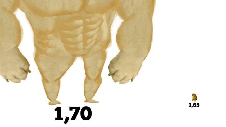 Marcianadas 436 19062020001453 (213)