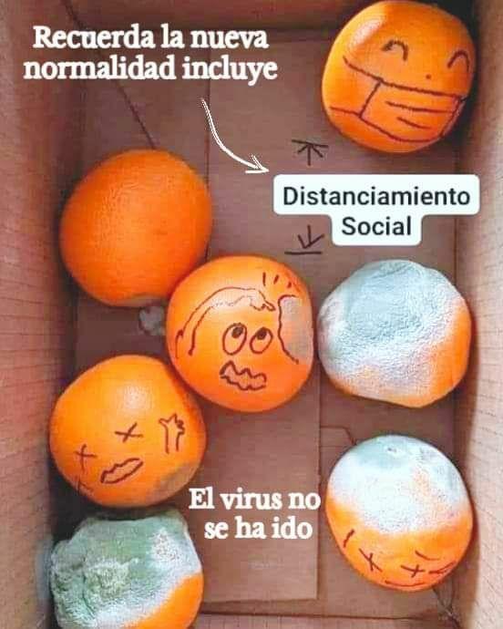 Marcianadas 436 19062020001453 (228)