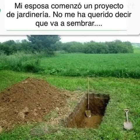 Marcianadas 437 26062020001201 (30)