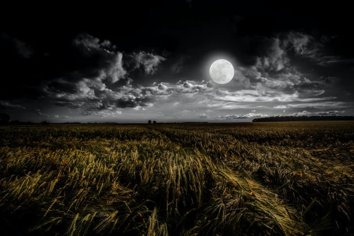 la luna en un paraje