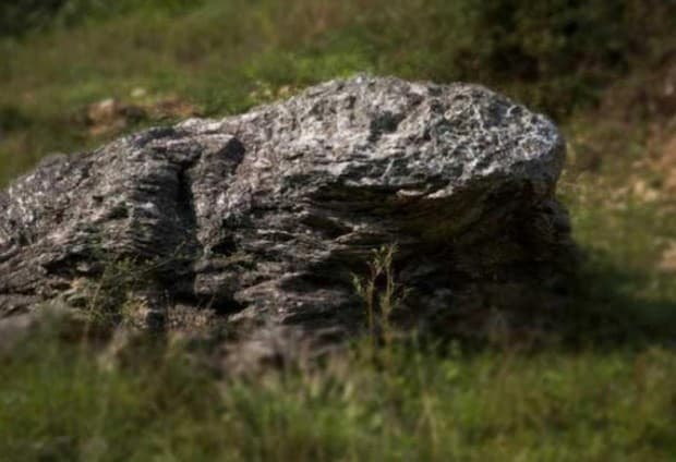 piedra con forma de sapo