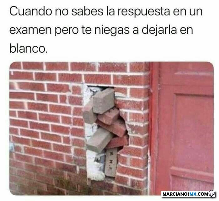 Marcianadas 339 100720201115 (45)