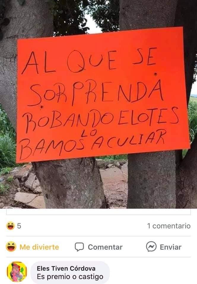 Marcianadas 438 03072020001411 (153)