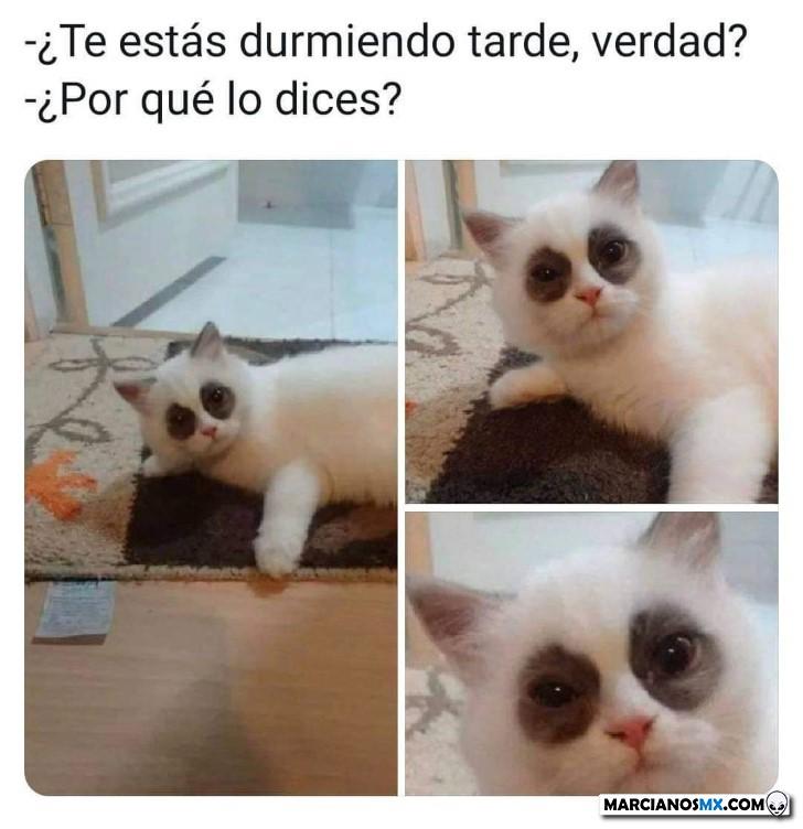 Marcianadas 438 03072020001411 (39)