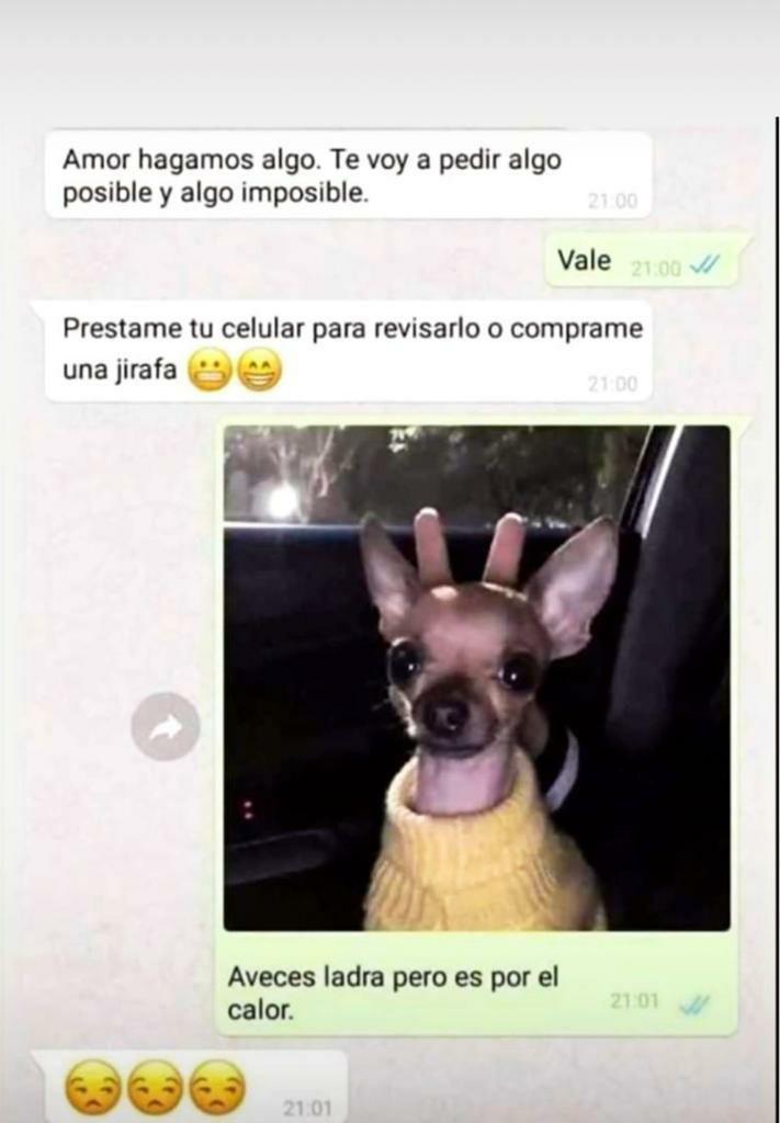 Marcianadas 439 10072020001316 (116)