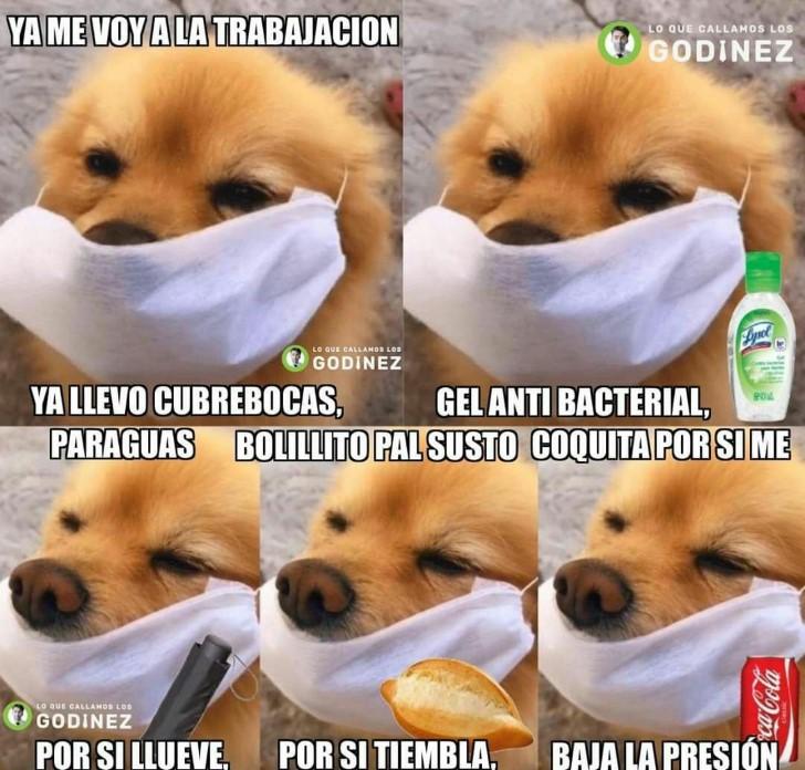 Marcianadas 439 10072020001316 (51)