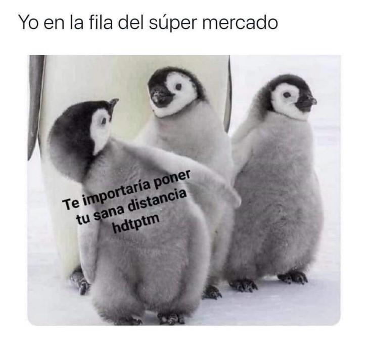 Marcianadas 439 10072020001316 (55)