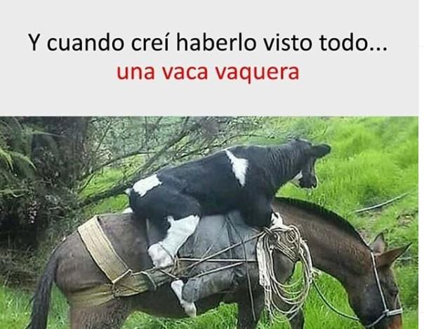 Marcianadas 440 17072020001434 (51)