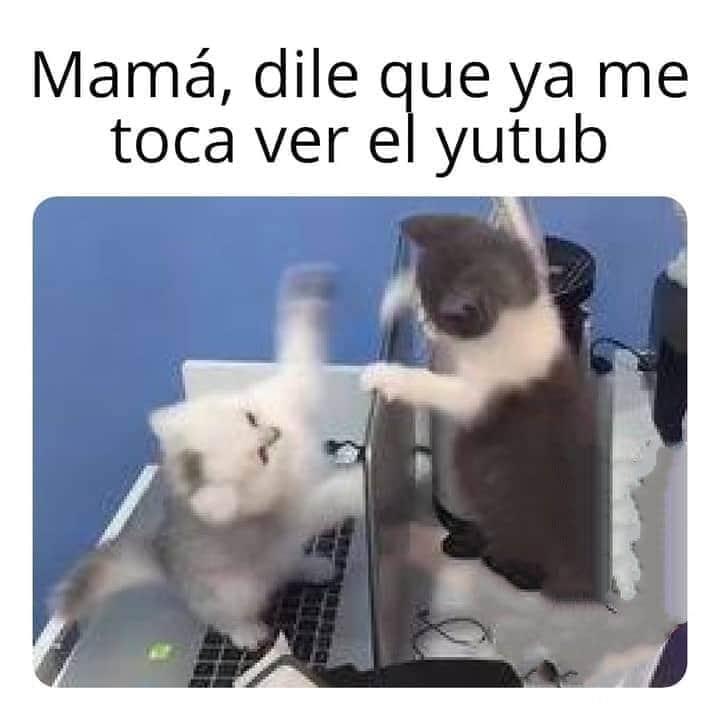 Marcianadas 442 31072020001251 (118)