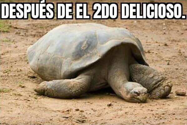Marcianadas 442 31072020001251 (128)