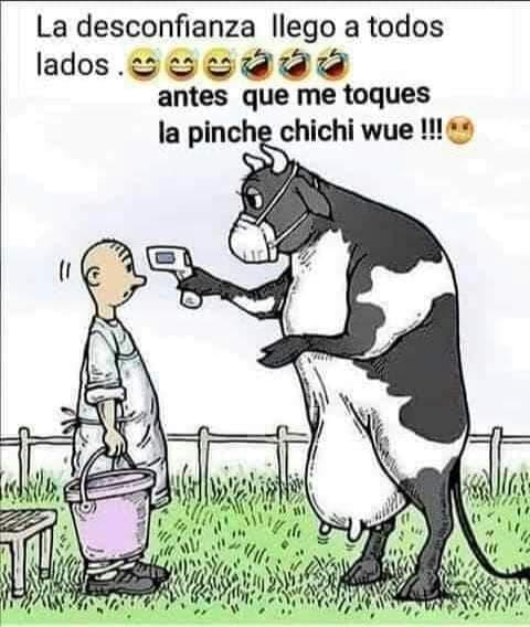 Marcianadas 442 31072020001251 (17)