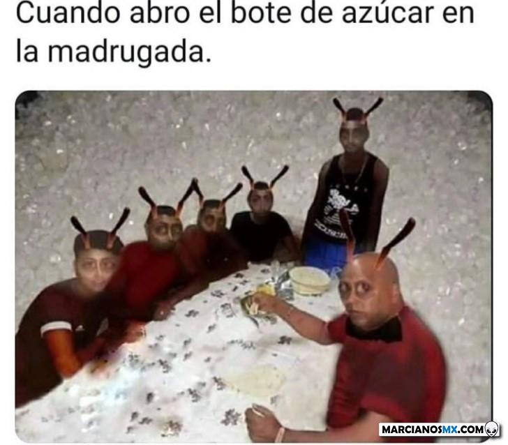 Marcianadas 442 31072020001251 (213)