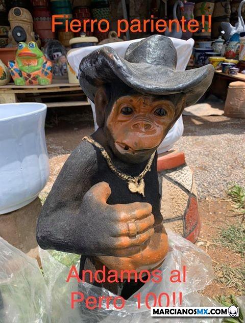 Marcianadas 442 31072020001251 (26)