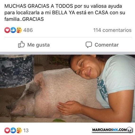 Marcianadas 442 31072020001251 (74)