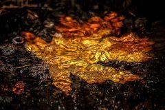 ejecucion por lluvia dorada(1)