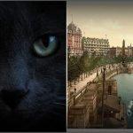 felino diabolico en Londres