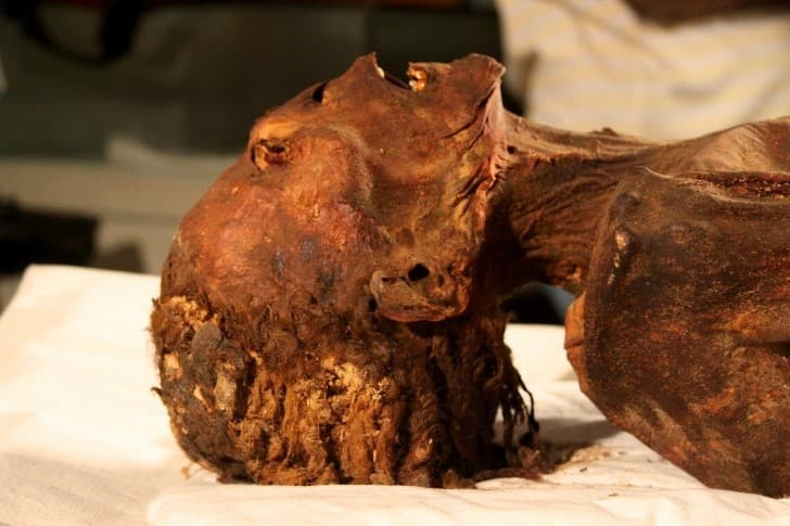 la momia que grita(1)